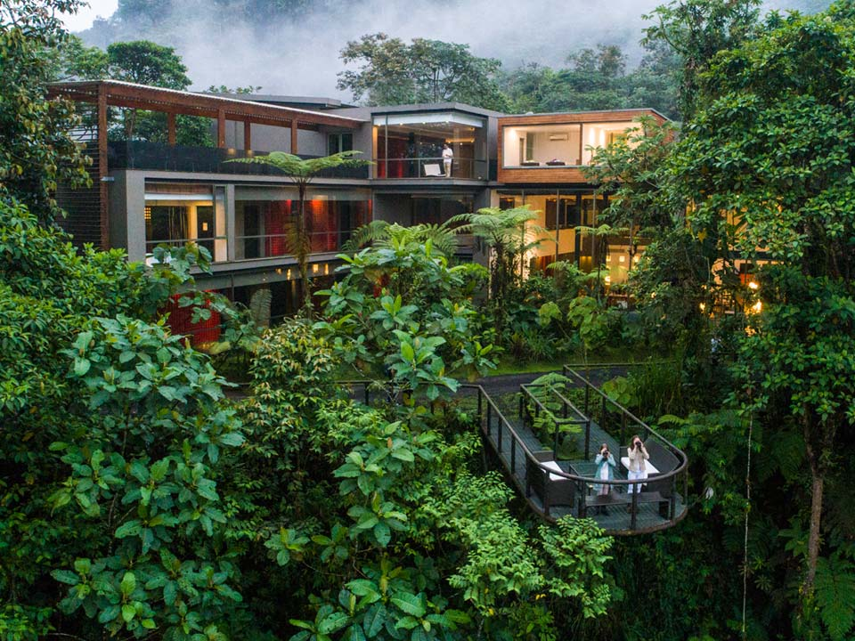 Out Nomad gay luxury travel in Ecuador cloud forest.